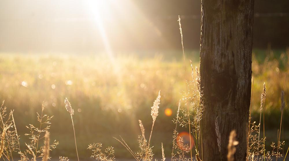 soleil vitamine D
