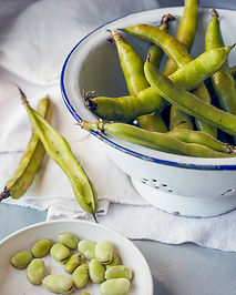 fava beans.jpg