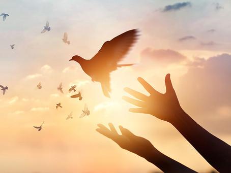 Forgiveness Heals the Soul