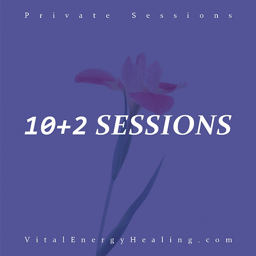Business Healing 10+2 Sessions