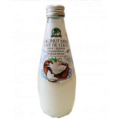 Evergreen Coconut Milk Original Flavour 290ml