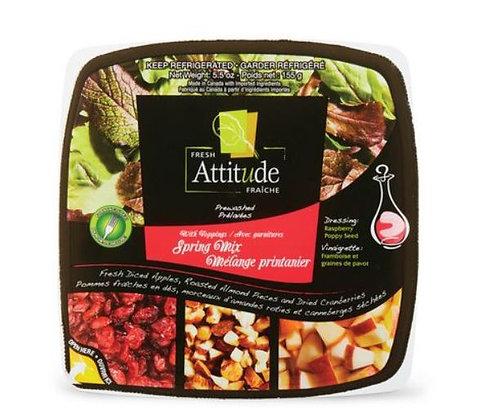 Fresh Attitude Spring Mix Salad Kit