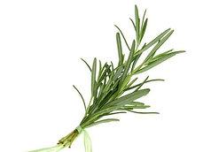 Herbs rosemary - 1pack