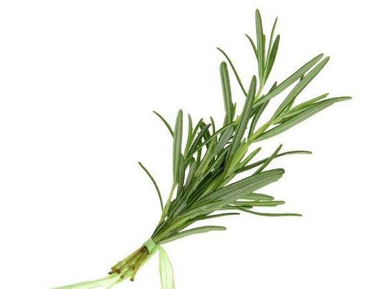 15min-Herbs rosemary - 1pack