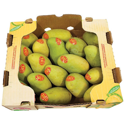 Ataulfo Mango in box