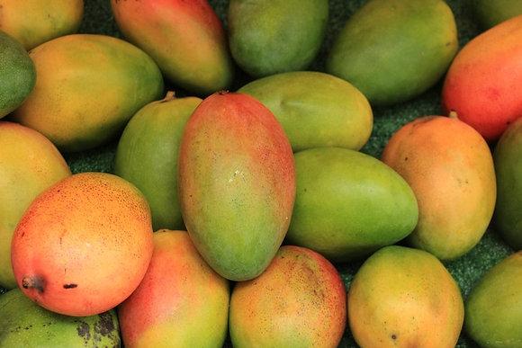 Cuba Mango 1lb