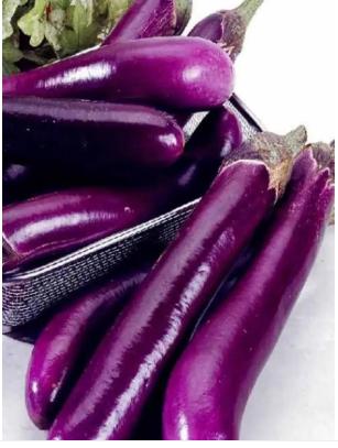 Chinese Eggplant 2Pcs