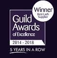 guild-award.png