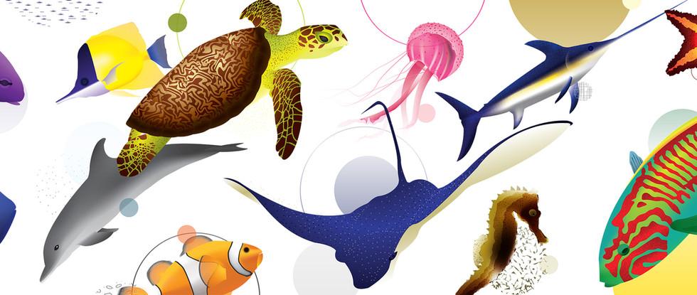 Barrier Reef Aquarium