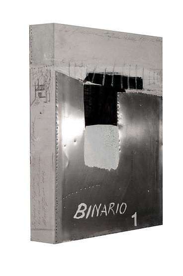 Binario 1.jpg