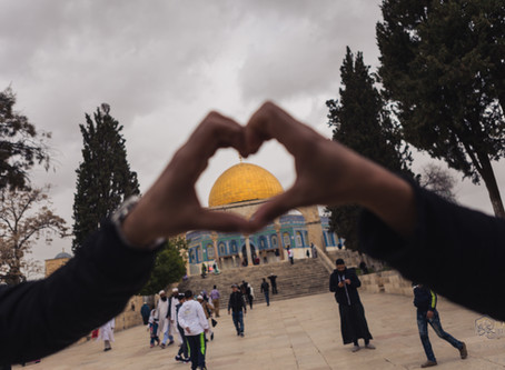 BACK FROM PALESTINE WITH LOVE