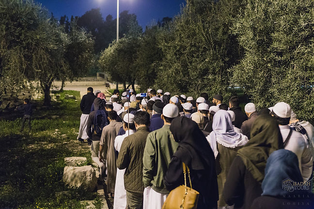 Ibadah Tours Al Aqsa touring.jpg