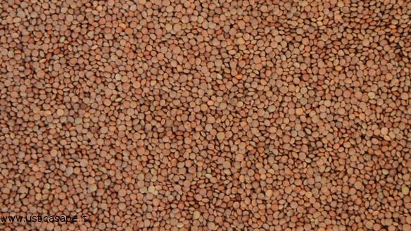 La mini astro-lenticchia di Ustica