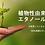植物性エタノール エタノール除菌力