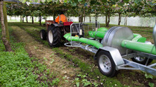 POLLENSMART PROVES ITS WORTH FOR KIWIFRUIT ORCHARDIST