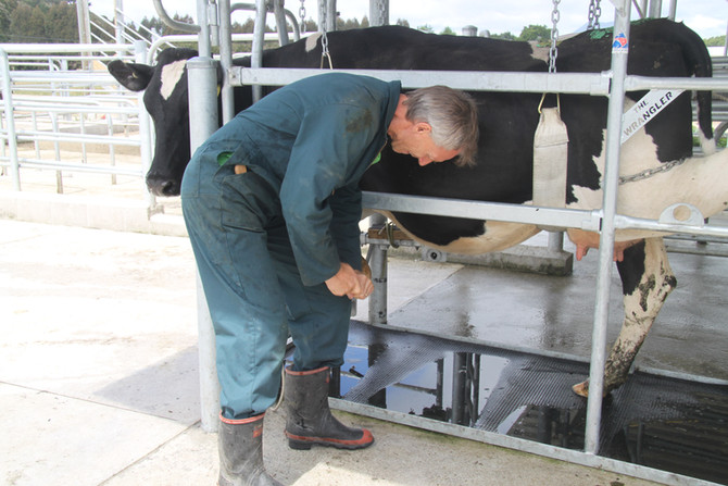 Get your Animal Handling sorted for the new season