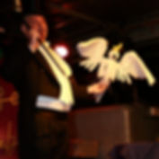 willy-monroe-bird.jpg