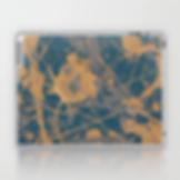 Laptop & iPad skin.png