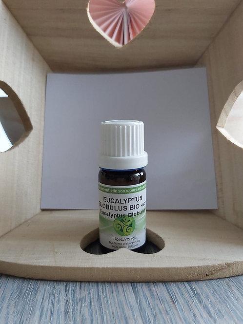 Huile essentielle d'Eucalyptus Globulus BIO 10 ml