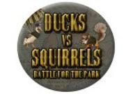 Ducks vs squirrels.jpg