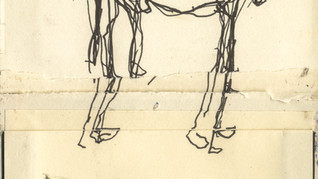 Greyhound drawing