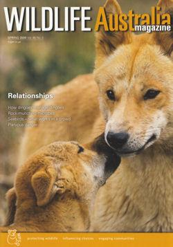Front Cover- Wildlife Australia