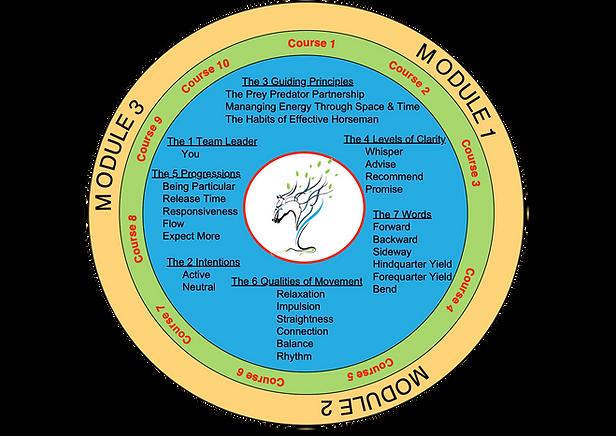 FUTGH Foundation Circle.png