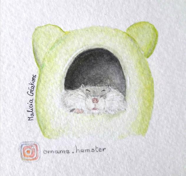 Hamster endormi