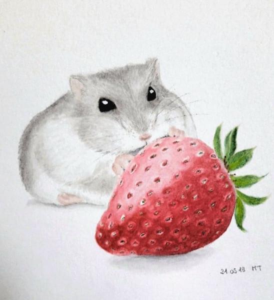 Moumouse & sa fraise