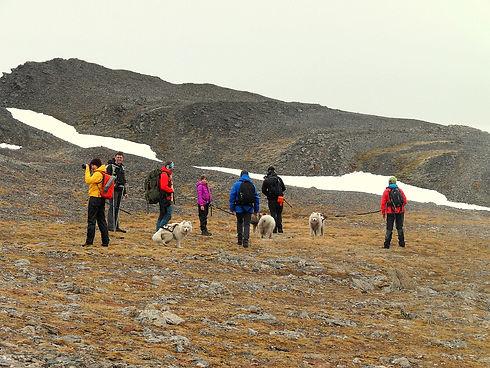 Barentsburg Husky Center Dog Trekking