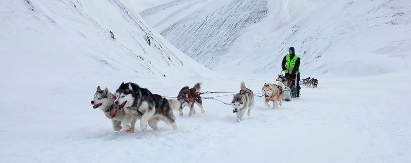 Svalbard Stories day 3