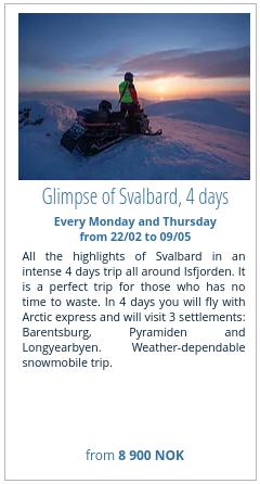 Glimpse of Svalbard