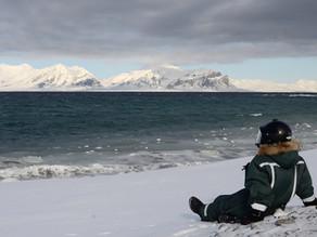 Самыми яркими впечатлениями из моих многочисленных поездок, были впечатления, полученные в Арктике