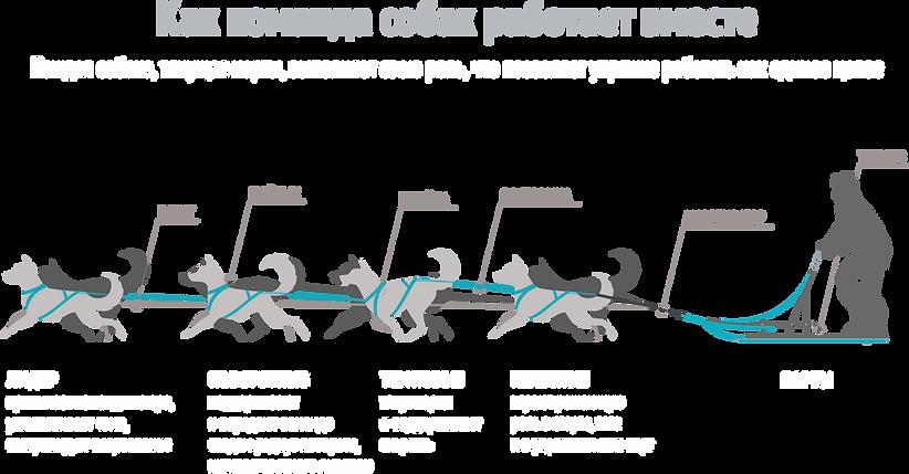упряжкаРУСпрозр.png