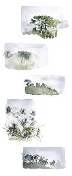 Artiste: Sophie Reynald