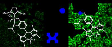 Ethylene Detection.png