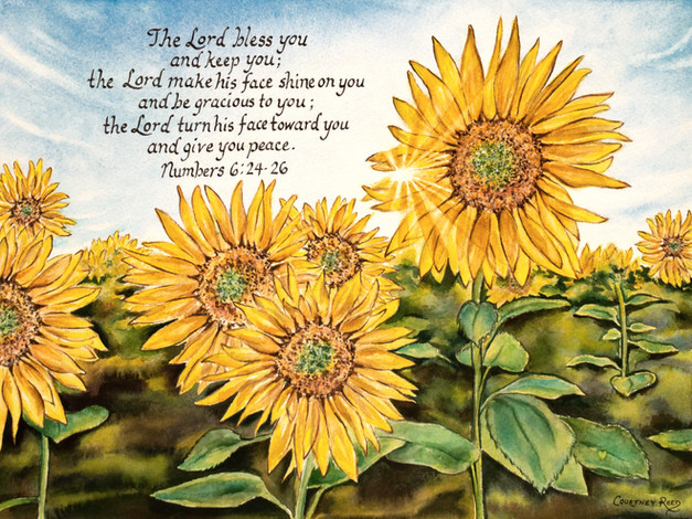 Painting the light 🌻