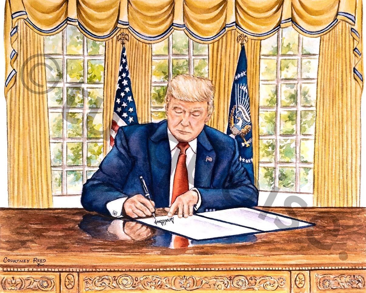 President Trump in Oval Office