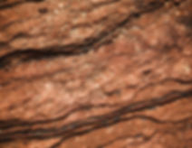 gerson-repreza-67gCKFVYh7s-unsplash.jpg
