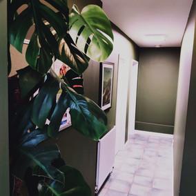 02. corridor with plant.jpg