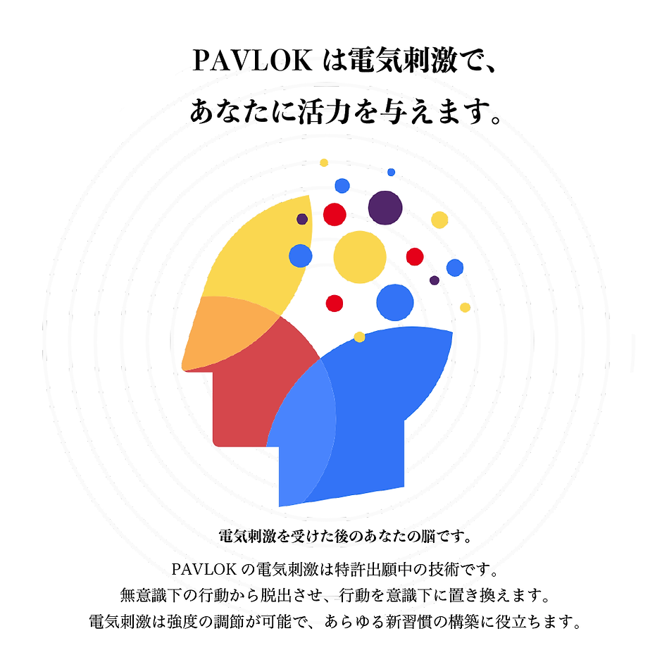 PAVLOK 特許2-5_アートボード 1.png