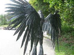 Ravenman2