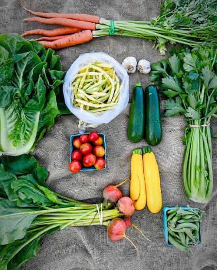 Farm veggies.JPG