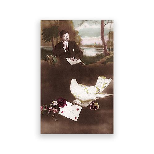 Carte postale - Nestor
