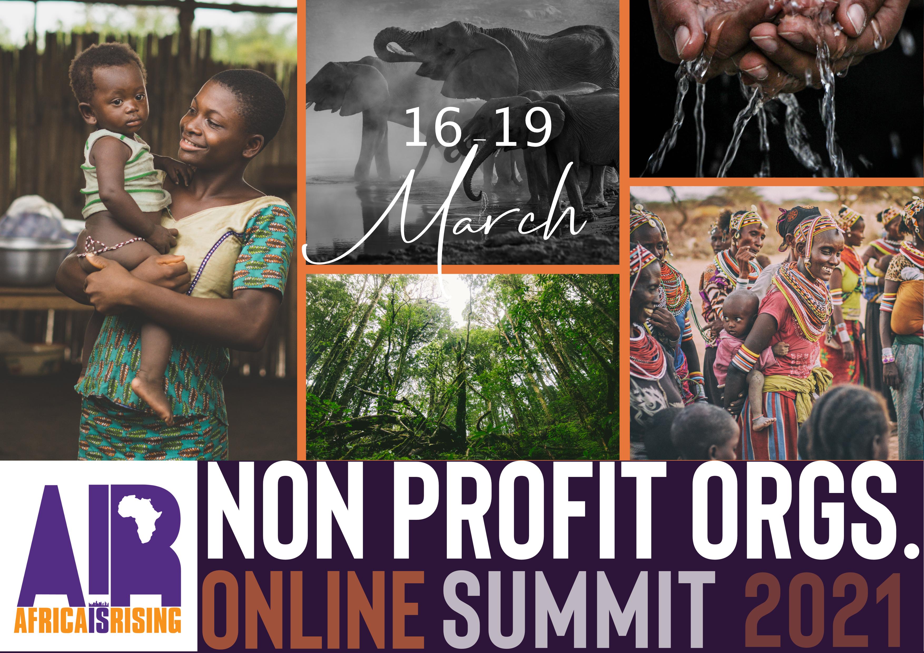 Africa Non Profit Industry Summit