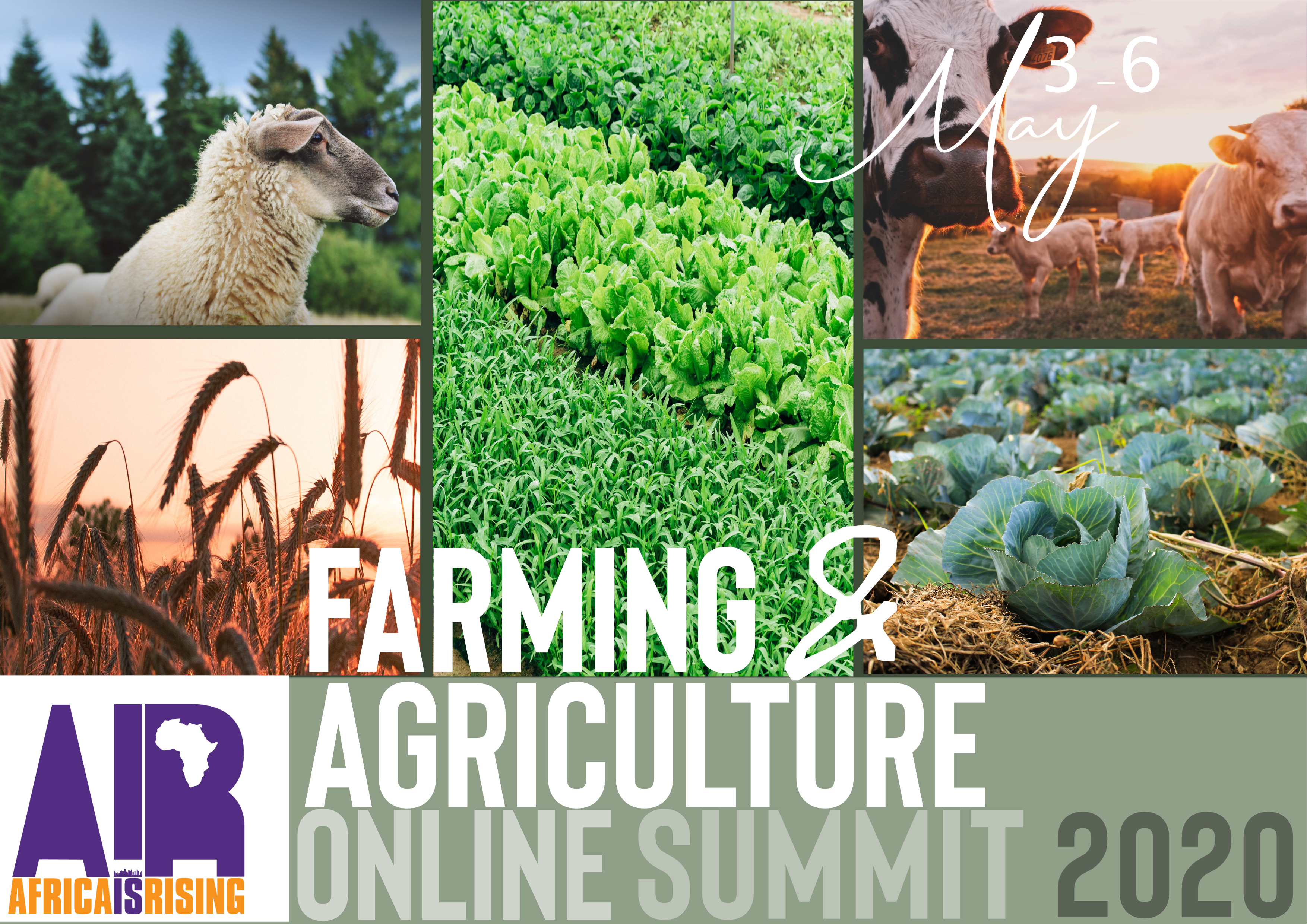 Farming and Agriculture Africa