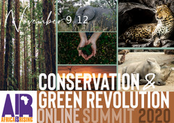 Conservation & Green Movement Africa Sum