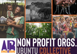 Non Profit Industry Community