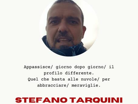 STEFANO TARQUINI
