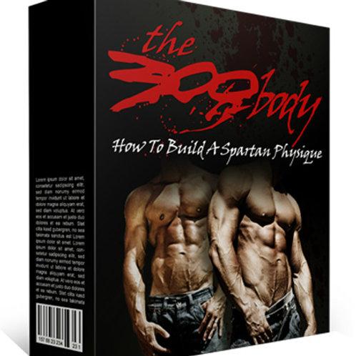 The 300 Body- Audio Upgrade